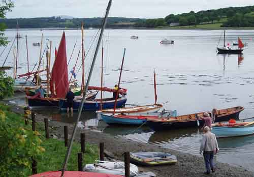 Some of the Sail and Oar fleet at Llangwm